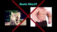 acute chest