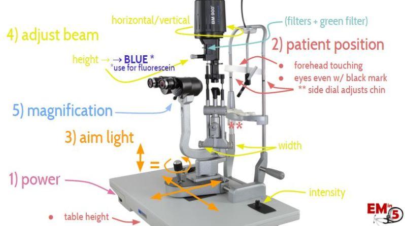 Slit Lamp Anatomy Em In 5